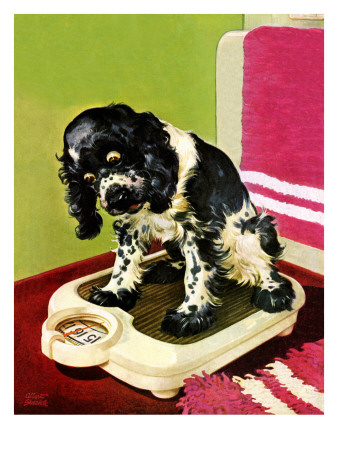 """""""Butch Weighs In,"""" September 1, 1945 Giclee Print by Albert Staehle"""