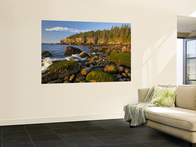 Polished Rocks at Otter Cliffs, Acadia National Park, Maine, USA Wall Mural by Chuck Haney