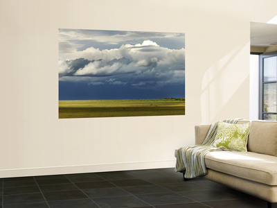 Storm Clouds Building over the Mara Savannah at Dusk Wall Mural by Doug McKinlay