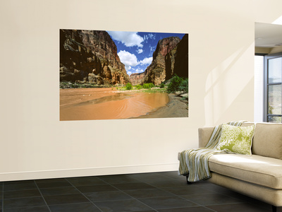 View Upriver From National Canyon, Grand Canyon National Park, Arizona, USA Wall Mural by Bernard Friel