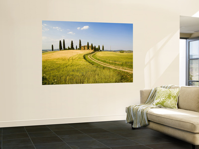 Tuscan Villa Nearing Harvest, Tuscany, Italy Wall Mural by Terry Eggers