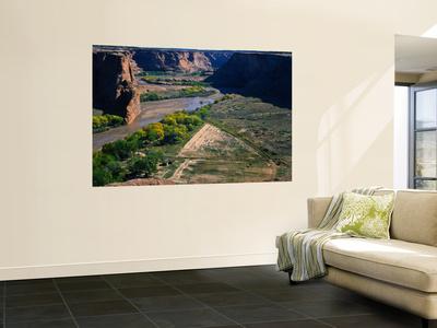 Tsegi Overlook Along the South Rim Drive, Canyon De Chelly National Monument, Arizona, USA Wall Mural by Bernard Friel