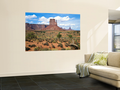 Mitten and Buttes at Mid-Day Navajo Tribal Park, Monument Valley, Arizona, USA Wall Mural by Bernard Friel