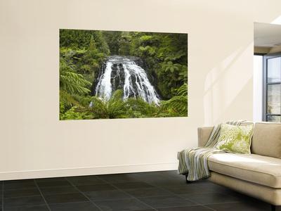 Owharoa Falls, Karangahake Gorge, Waikato, North Island, New Zealand Wall Mural by David Wall