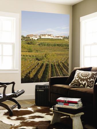 Vineyards in Goriska Brdy Wine Region Wall Mural by Richard Nebesky