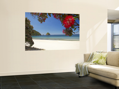 Pohutukawa Tree in Bloom and New Chums Beach, Coromandel Peninsula, North Island, New Zealand Wall Mural