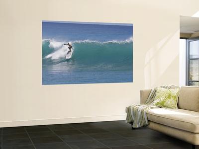 Surfing at Waikiki, Honolulu, Hawaii, USA Wall Mural by Douglas Peebles