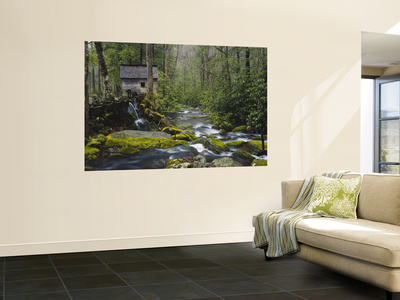 Watermill By Stream in Forest, Roaring Fork, Great Smoky Mountains National Park, Tennessee, USA Wall Mural