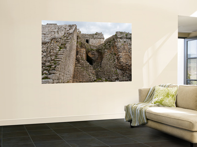 The Nunnery Wall Mural by Sabrina Dalbesio