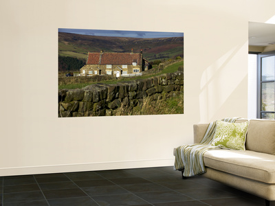Farmhouse and Dry Stone Wall, North York Moors National Park Wall Mural by Doug McKinlay