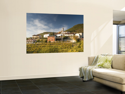 Vineyards and Village of Gabrje, Vipava Valley Wine Region Wall Mural