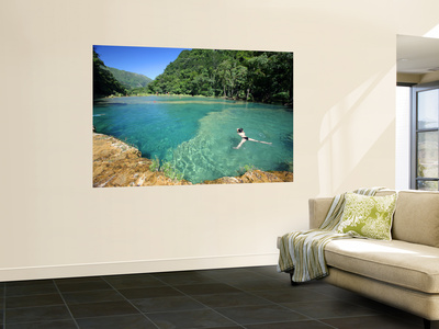 Visitors Swimming in Turquoise-Coloured Waters of Semuc Champey Wall Mural by Paul Kennedy