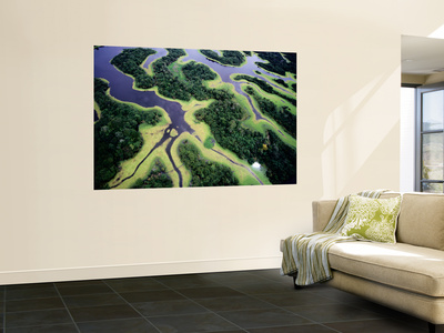 Overhead of Rio Negro Wall Mural by Diego Lezama