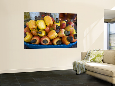 Cashew Fruit Wall Mural by Viviane Ponti