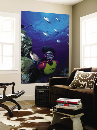 Diver Looking at Squirrelfish (Holocentrus Adscensionis) on Voral Head Wall Mural by Michael Lawrence
