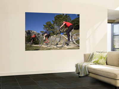 Mountain Bikers Wall Mural by Diego Lezama