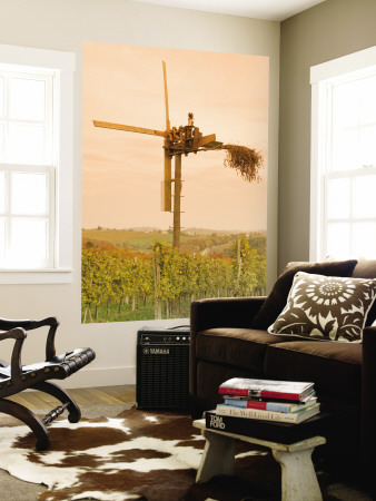Vineyard Windmill Wall Mural by Richard Nebesky