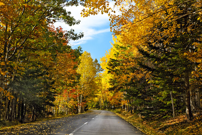 Autumn Scenic Drive, Acadia, Maine Photographic Print by George Oze