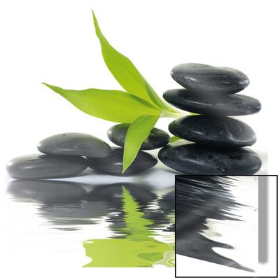 Zen Impression Poster