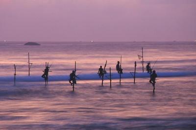 Stilt Fishermen Photographic Print by Charles Bowman