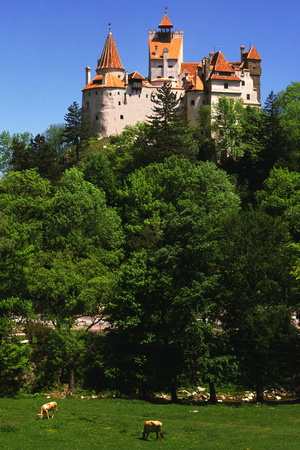 Bran Castle Photographic Print by Charles Bowman