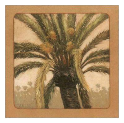 Palmtree IV Prints by Javier Fuentes