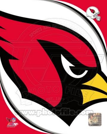 Arizona Cardinals 2011 Logo Photo