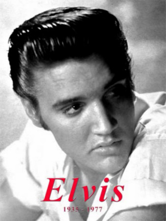 Elvis Tin Sign