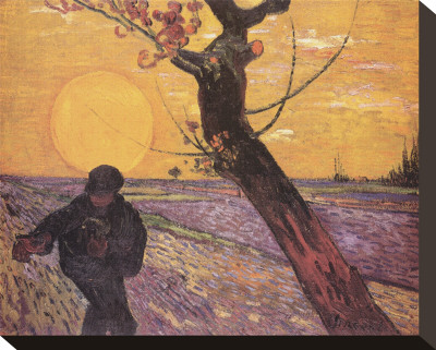 The Sower, c.1888 Stretched Canvas Print by Vincent van Gogh