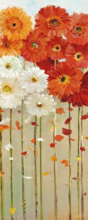 Daisies Fall II Poster by Danhui Nai