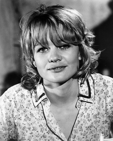 Judy Geeson - Sam Hill: Who Killed Mr. Foster Photo