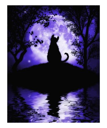 Rosalie's Moon Prints by Julie Fain