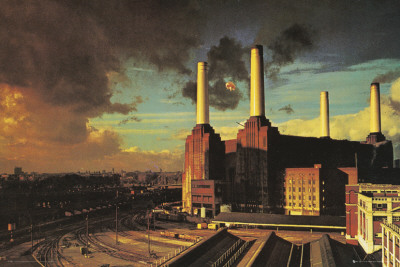 Pink Floyd-Animals Affiche