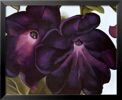 Black and Purple Petunias Art by Georgia O'Keeffe