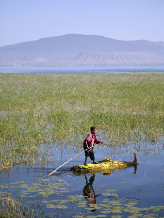 Ethiopia, Lake Awassa; a Young Boy Punts a Traditional Reed Tankwa Through the Reeds Fotografie-Druck von Niels Van Gijn