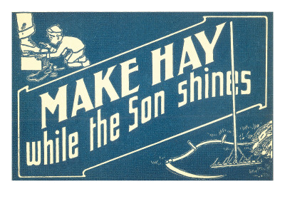 Make Hay While the Son Shines Prints