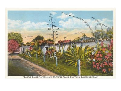 Cactus Garden, Old Town, San Diego, California Posters