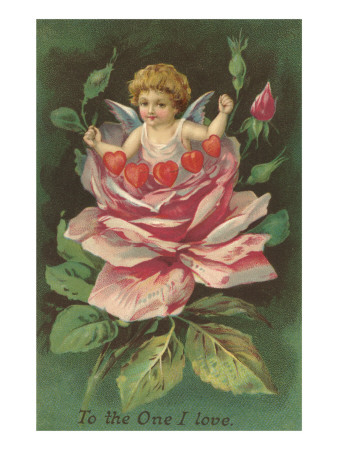 To the One I Love, Cupid in Rose Prints