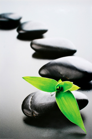 Zen Stones-Green Poster