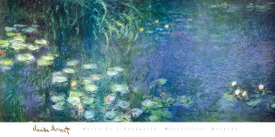 Water Lilies Morning Art Print
