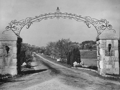 Large Gate and White Fencing, Surrounding Road Leading into a Farm Premium Photographic Print