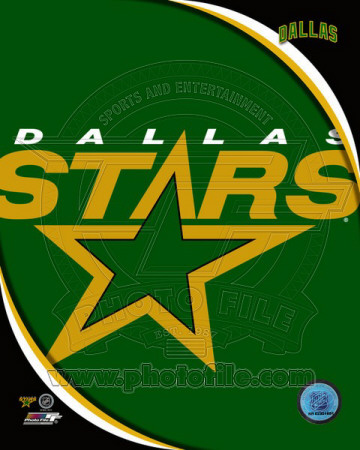 Dallas Stars 2011 Team Logo Photo