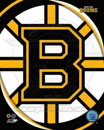 Boston Bruins 2011 Team Logo Photo