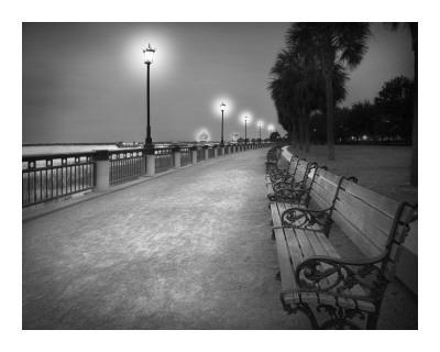 Charleston I Prints