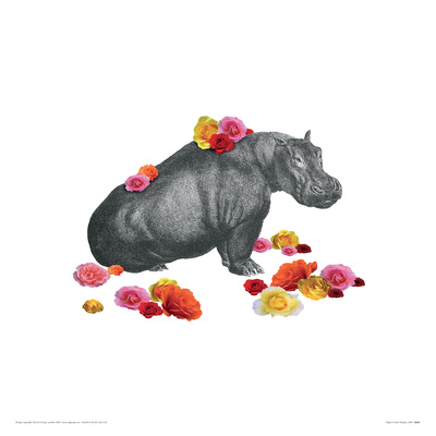 Hippo reproduction procédé giclée