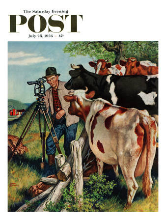 """""""Surveying the Cow Pasture"""" Saturday Evening Post Cover, July 28, 1956 Giclee Print by Amos Sewell"""