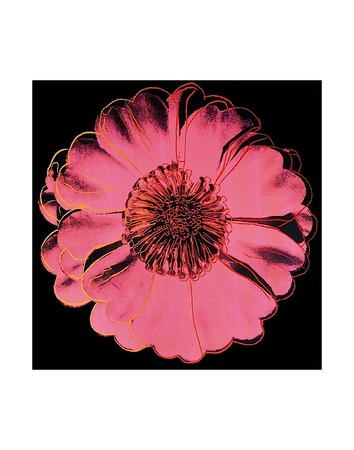 Flower for Tacoma Dome, c. 1982 (black & pink) Art Print