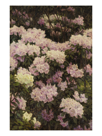 Rhododendrons Premium Giclee Print by Alfrida Vilhelmine Ludovica Baadsgaard