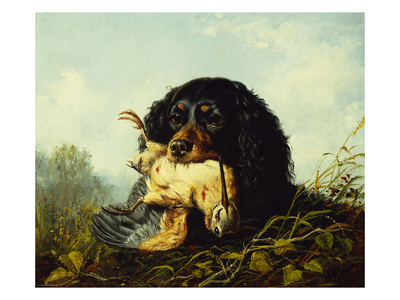A Cocker Spaniel with a Woodcock Premium Giclee Print by Arthur Fitzwilliam Tait