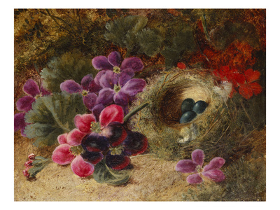 A Bird's Nest and Geraniums Premium Giclee Print by Oliver Clare